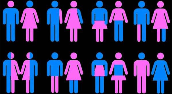 Ambasada SUA, În Parteneriat cu Activiștii LGBT, Vrea să Ducă Ideologia Gender Liceenilor din Focșani