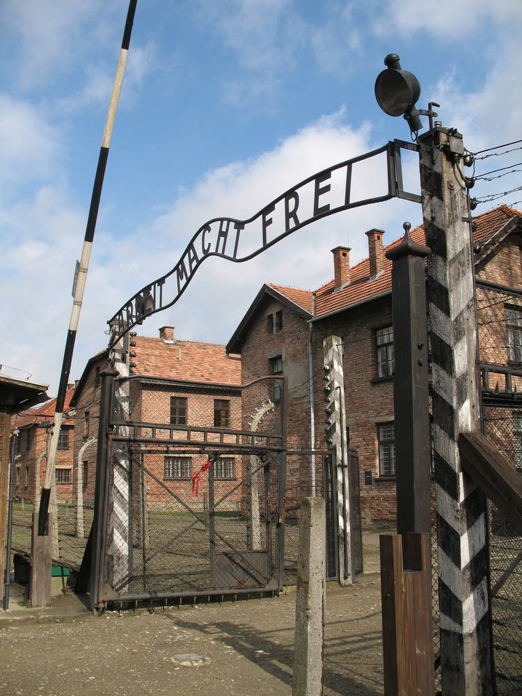 Falșii Supraviețuitori Primesc Îndemnizație Simultan de la Germania și de la România