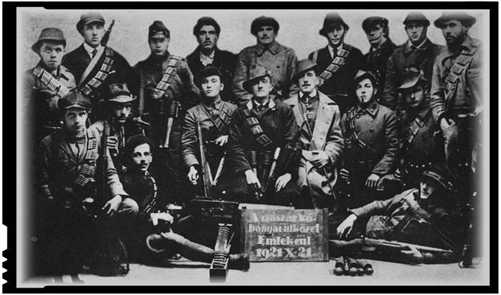 Organizații Teroriste Maghiare