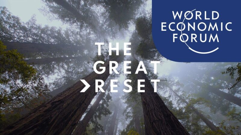 The Great Reset 1